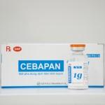 cebapan1